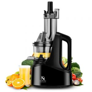 Natalie Styx Juicer Slow Masticating Juicer Extractor