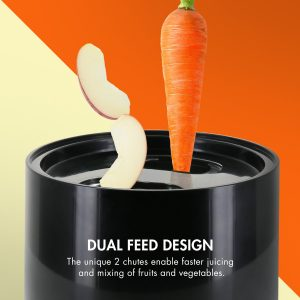 Tenergy Masticating Juicer Dual Feed Design