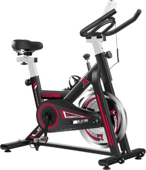 DGQHME Indoor Stationary Bike