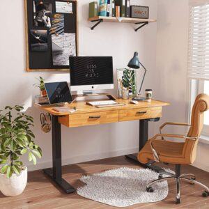 FEZIBO Adjustable Height Electric Standing Desk with Double Drawer